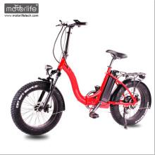 2017 New design 48V1000W 20'' e fat tire bike electric bike ,cheap folding electric bike made in china for sale
