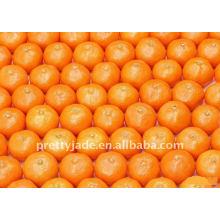 Chinese Baby Mandarin orange