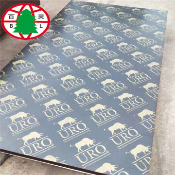 Black film faced plywood for construction marine plywood