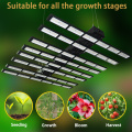 Superba LED Grow Light fai da te 600W