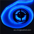 Modern Custom 5m Vattentät SMD3528 Led Strip Light