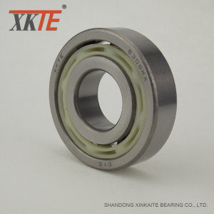 Nylon Bearing 6306 TN9 For Roller Conveyor