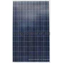 Panel solar policristalino 285W 36V (SGP285W-36V)