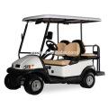 Горячая продажа одобренный CE электрический гольф багги из Китая