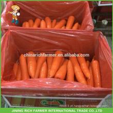 Nova cenoura fresca no preço do competidor