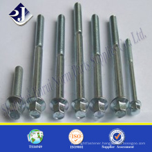 Hot sale product good quality high strength Hexagonl Head Flange Bolts
