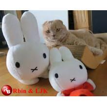 OEM soft ICTI plush toy factory cute cat plush toy