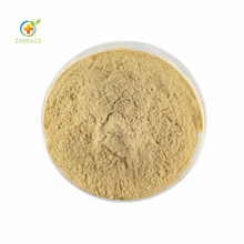 High Quality Natural and Pure Ginseng Monomer Extract 80% Saponins