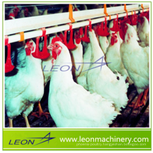 Leon Brand Automatic poultry drinking system for chicken house