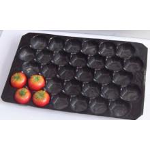 A melhor venda em México, mercado do mercado de Canadá indica as inserções dos PP do produto comestível do processo da bolha para os tomates 39X59cm