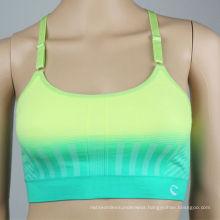 Women 2014 ladies' hot sexy xxxx sports seamless bra