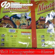 Type de pile de Flex Machines d'impression de papier / plastique