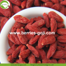 Grosir Massal Premium Rendah Goji Berries Pestisida