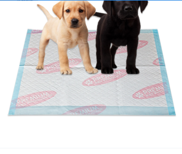 puppy pad with adhersive tape