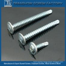 4.2*19mm Modified Truss Head Self Drilling Screws