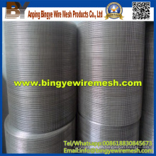 China Supplier Stainless Steel Welded Mesh for Sale