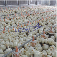 Automatic poultry farm equipment for chicken with CE