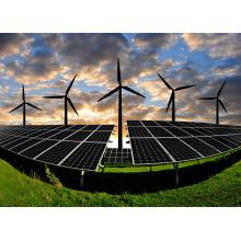 Generador de la turbina de viento 1000W / generador de la energía eólica con los sistemas de energía solar