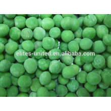 Cultivation IQF frozen green pea