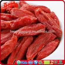 Bayas de goji frescas para la venta de bayas de goji para la venta en tiendas de bayas de goji para la venta de california
