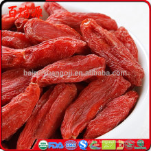 Fruits séchés organiques de haute qualité de Ningxia rouge de baies rouges de Goji