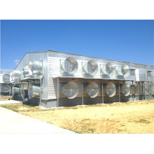 Modern Style Prefabricated Steel Structure Chicken House (KXD-PCH3)
