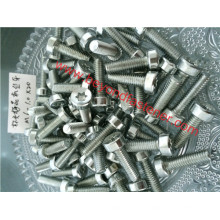Self Tapping Screw Torx Screw Garden Machinery Screw
