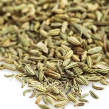 Top Quality Spice Fennel