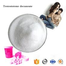 купить в Интернете оральный период полураспада порошка деканоата тестостерона