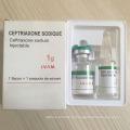 O antibiótico do PBF certificou o sódio da injeção do sódio do Ceftriaxone / sódio de Ceftriaxone para a injeção