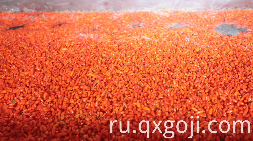 Red Organic Goji Berry