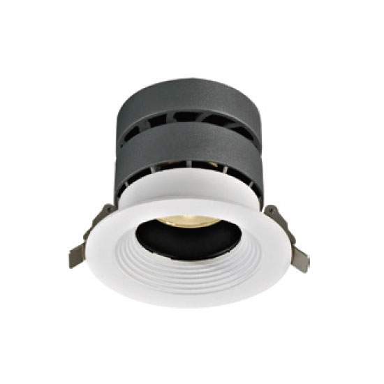 Decorative Exquisite 20W LED Downlight
