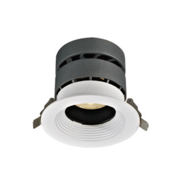 Dekoratives exquisites 20W LED Downlight