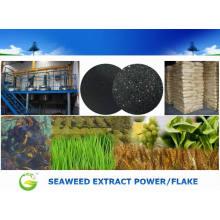 Energía soluble en agua del extracto de algas marinas para la agricultura