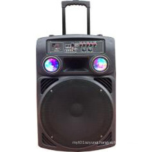 15 Inch Outdoor PA Bluetooth Speaker with Rechargeable Battery