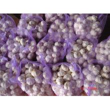 Ail blanc pur chinois 20kg / sac