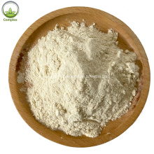 High Quality Aloe Vera Extract Powder