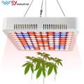 painel led grow light 600w wenyi