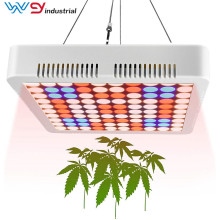 panel led crece luz 600w wenyi