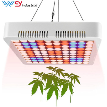 panel led crece luz 600w