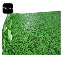 EVA Tatami Grass Printing Taekwondo Sports Mat