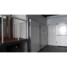 Hot Sale Walk In Cold chamber Freezer Chiller For Vegetables Fruits Meat Fish