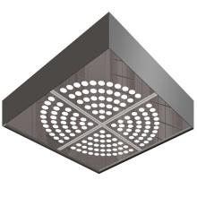 Plafond de voiture d'ascenseur avec panneau transparent blanc (HDHM-415)