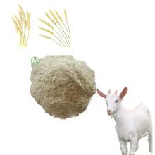 Protein Powder Wheat Gluten Meal 65%Min