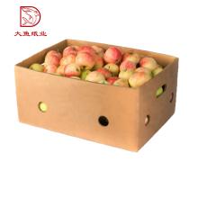 Top-Qualität maßgeschneiderte billig preis 1 kg 2 kg 3 kg 5 kg bauernhof frische drachen obst box