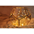 Lantern Terrarium? W / 20 LED String Light