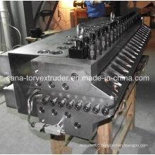 PVC Skinning Foamed Board Extrusion Mould