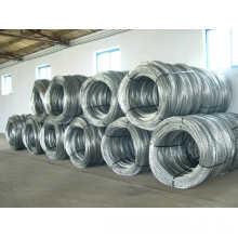 Fil à coque en PVC à barbarie Bto-12 (Hebei Factory & Export)