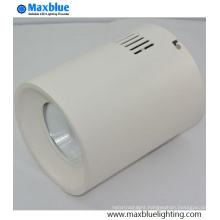40-50W High Quality Surface Mounted Hotel Downlight