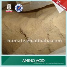 Poudre d'acide aminé brune 100% soluble dans l'eau